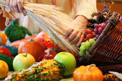 Decorating cornucopia. Woman setting up Thanksgiving cornucopia. Very shallow DOF with focus on basket edge Royalty Free Stock Image