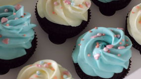 Decorating cup-cake with cream. Culinary master class design cupcakes, cream cupcakes from the pastry bag. Using cooking. Bag, confectioner making multicolor stock video footage