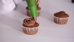 Decorating cup-cake with cream. Using cooking bag, confectioner making multicolor cupcakes for party. Shot of woman`s hands putting butter cream on the tasty stock video