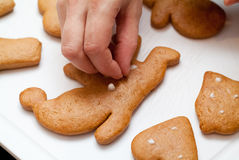 Decorating gingerbread Royalty Free Stock Image