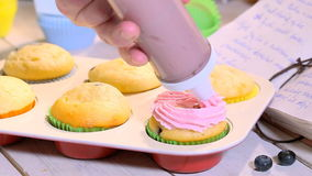 Decorating homemade cupcakes with blueberries stock footage