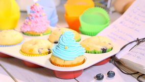 Decorating homemade muffins with berry fruits stock video footage