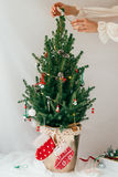 Decorating Miniature Real Christmas Tree with Vintage Decorations Stock Photography