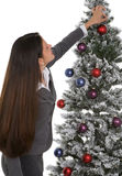 Decorating Office Tree Royalty Free Stock Photo