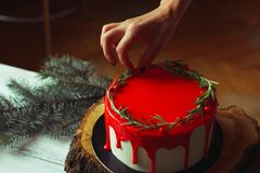 Decorating process of homemade Christmas red ganache cake by woman`s hands with rozmarine and red berries over old white wooden t royalty free stock photography