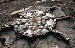 Decorating with seashells Stock Photo