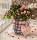 Azalea on the window decorated with a decorative heart and beads Stock Photo