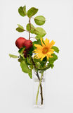 Decoration with apples and sunflower Royalty Free Stock Photography