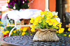 Decoration artificial flower Stock Photography