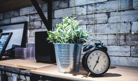 Decoration of artificial plants and classic alarm clock in house stock images