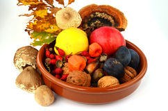 Decoration of autumn fruits. Autumn decoration - fall in a ceramic bowl - - fruit, fall leaves, acorns, nuts and mushrooms Stock Images