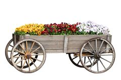 Decoration background. Closeup of decorative old big wooden cart or waggon with many colorful flowers isolated on a white stock photos