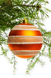 Decoration ball on fir branch. White background Stock Photos