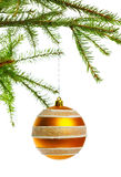 Decoration ball on fir branch. Yellow decoration ball on fir branch Stock Images