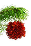 Decoration ball on pine branch Royalty Free Stock Photo