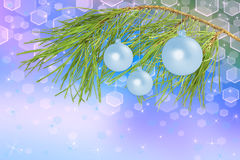 Decoration balls on pine branch, background. Christmas decoration ball on pine branch, beautiful blue background Royalty Free Stock Image