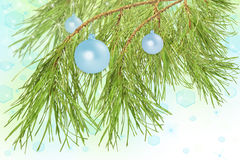 Decoration balls on pine branch, background Royalty Free Stock Image