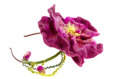 Decoration beautiful burgundy flower hoop on the head Stock Images