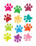 Decoration of bone and paw texture in color Stock Photo