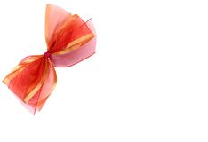 Decoration bow Stock Images