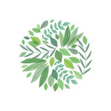 Decoration branches with leaves Stock Photography