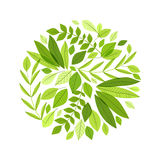 Decoration branches with leaves Royalty Free Stock Photo