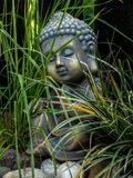 Decoration buddha statue little in a garden outdoor covered with grass stock photos