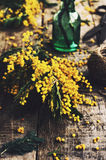 Decoration with bunch of mimosa, scissors and green bottle Royalty Free Stock Photos