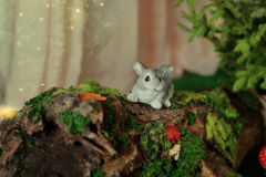 Decoration - bunny on driftwood with moss Stock Photography