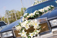 Decoration of car Royalty Free Stock Photos