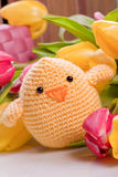 decoration with chick and tulip flowers Stock Photography
