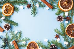Decoration for Christmas concept. Food oranges nuts spices pine cones Christmas tree on blue pastel background with copy space. Decoration for Christmas concept stock images