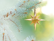 Decoration with Christmas star Stock Photo