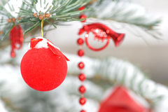 Decoration in a christmas tree. With snow stock photo