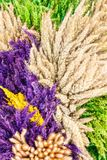 Decoration of dried flowers Stock Photography
