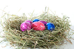 Decoration at Easter and brightly Stock Photography