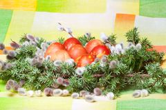 Decoration of easter eggs Stock Image