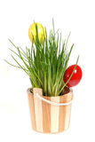 Decoration with easter eggs. Two easter eggs and green chive Stock Images