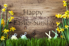 Decoration, Egg And Bunny, Gras, Text Happy Easter Sunday Royalty Free Stock Photo