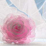 Decoration flower against white openwork fabric and blue sky. Pink decoration flower against white openwork fabric and blue sky Stock Photos