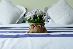 Decoration flower. On the bed Royalty Free Stock Images