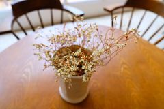 Decoration flowers are beautifully colored on the table in a coffee shop stock images