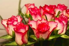 Decoration flowers photo Royalty Free Stock Image