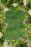 Decoration frame. Blurred  decoration frame. plant and cash Royalty Free Stock Photos