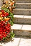 Decoration of fresh Vegetables Stock Photos
