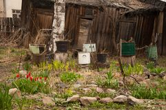 A country yard in spring. Village design. Stones, grass. Decoration of a garden in a counrty stile. Village like rusty pot Royalty Free Stock Photo