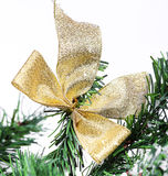 Decoration golden billow on new year tree branch Stock Photography