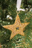 Decoration golden star. Golden star christmas decoration tree Stock Images