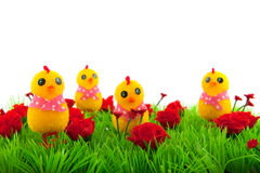 Decoration grass with flowers Royalty Free Stock Photos