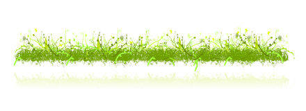 Decoration grass and nature ornaments Royalty Free Stock Photos